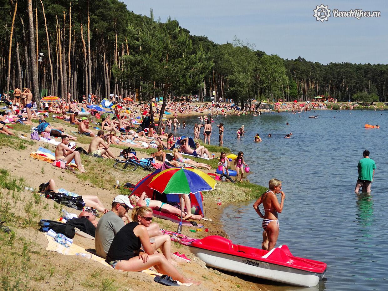 Чехи и чешки без одежды загорают